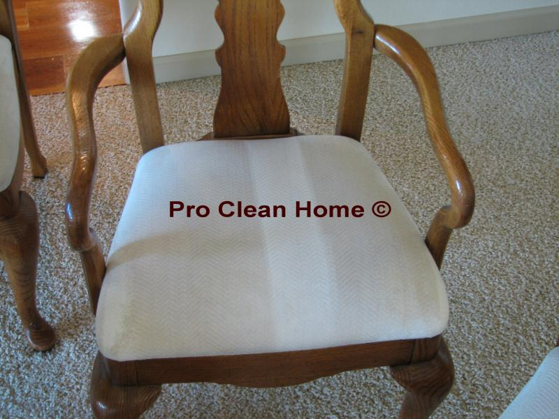 Pro Clean Home Buy Local Be Local Quot Safer For The