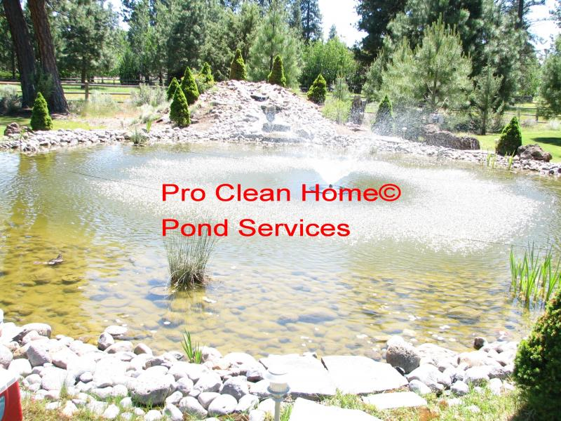 Pro clean home pro clean home services are listed for Local pond stores
